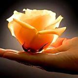 fleur dans main