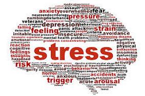 cerveau stress