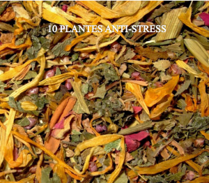 10 plantes anti stress